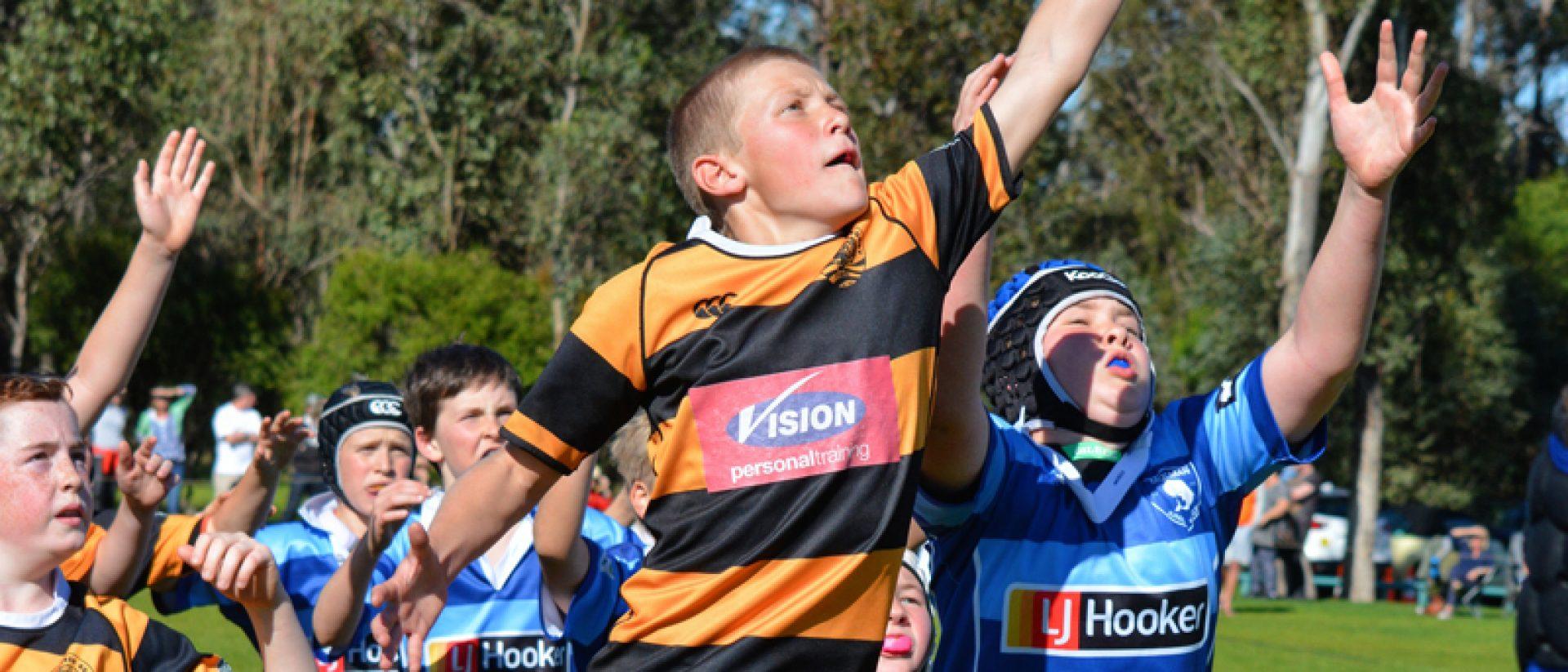 Sydney Junior Rugby Union